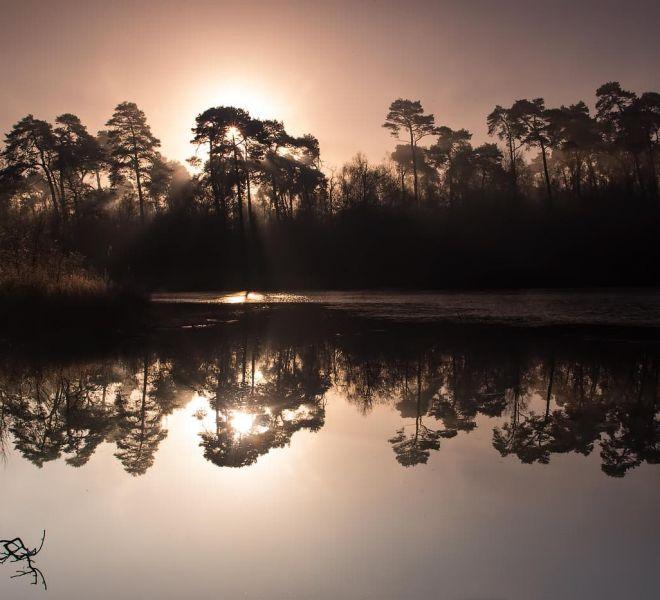Landscape-Oisterwijkse-Vennen-Holland_JSL7495