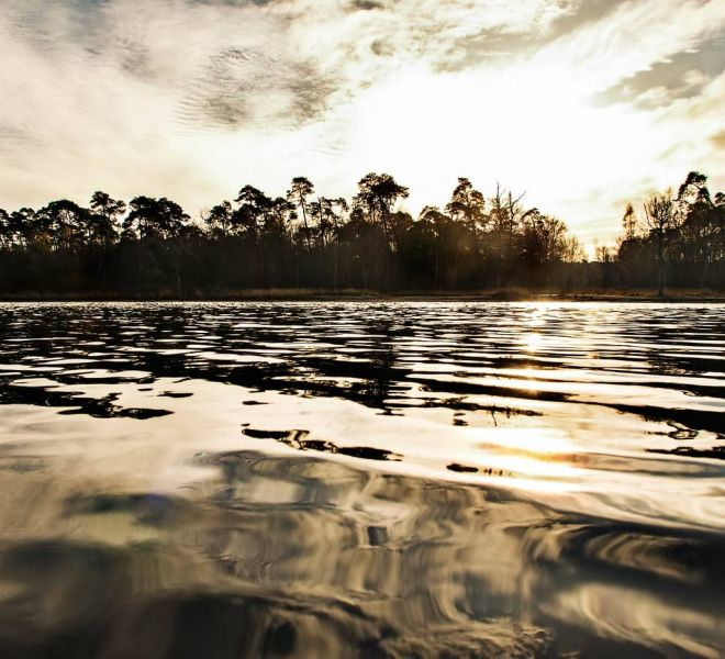 Landscape-Oisterwijkse-Vennen-Hollandn_JSL0838