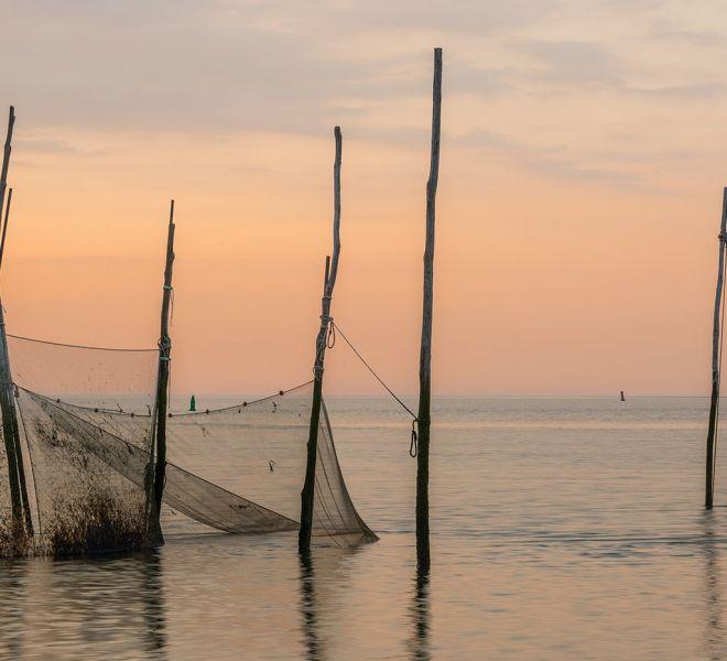 Visnetten op het Wad